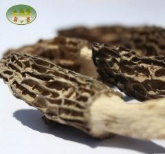 【西藏特产】奇圣-西藏 野生羊肚菌 膳食干货60g /份