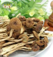 【西藏特产】奇圣-膳食佳品 奇圣 茶树菇 130g