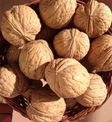 西藏野生核桃加查核桃天然原味老树山核桃孕妇坚果500g非纸皮新货