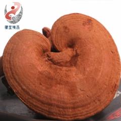 藏胞精品藏特产野生灵芝西藏发货500g