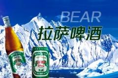 西藏拉萨啤酒 圣地圣水啤酒 西藏啤酒355ml