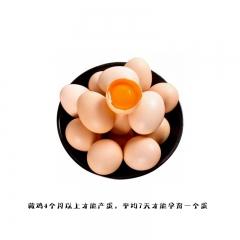 西藏林芝工布江达散养藏香鸡 鸡蛋2500g